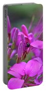 A Fly And A Flower Portable Battery Charger