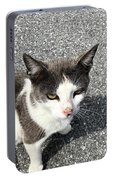 A Friendly Barn Cat Portable Battery Charger