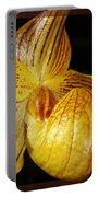 A Golden Slipper Portable Battery Charger