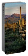 A Golden Sonoran Evening  Portable Battery Charger