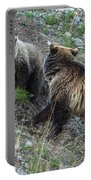A Grizzly Moment Portable Battery Charger