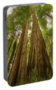 A Group Giant Redwood Trees In Muir Woods,california. Reaching F Portable Battery Charger