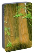 A Group Giant Redwood Trees In Muir Woods,california. Portable Battery Charger