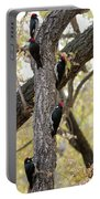 A Group Of Acorn Woodpeckers In A Tree Portable Battery Charger