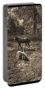 A Horse In The Field Portable Battery Charger