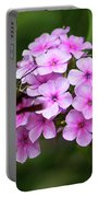 A Hummingbird Moth With Phlox Flowers Portable Battery Charger