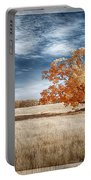 A Lone Tree Portable Battery Charger