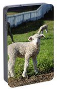 A Longwool Lamb Portable Battery Charger