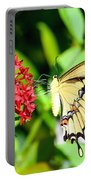 A Lovely Profile Portable Battery Charger
