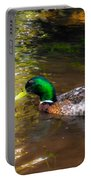A Male Mallard Duck 3 Portable Battery Charger