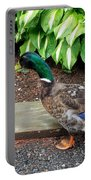 A Male Mallard Duck 4 Portable Battery Charger