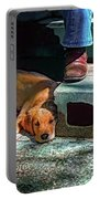 A Man And His Dog Portable Battery Charger
