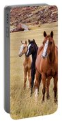 A Mare And Two Friends Portable Battery Charger