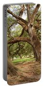 A Maze Of Oak Trees  Portable Battery Charger