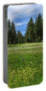 A Meadow In Lassen County Portable Battery Charger