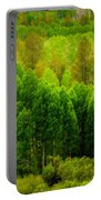 A Moment Of Green Portable Battery Charger