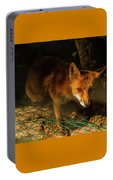 A Nocturne  Meeting With A Fox In The Woodland Portable Battery Charger