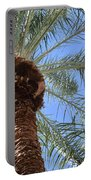A Palm In The Sky Portable Battery Charger