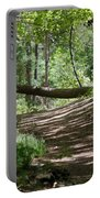 A Path In The Woods Portable Battery Charger