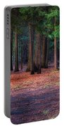 A Path Of Redwoods Portable Battery Charger
