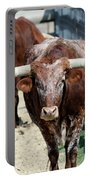 A Portrait Of A Texas Longhorn Steer Portable Battery Charger
