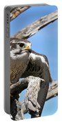 A Prairie Falcon Against A Blue Sky Portable Battery Charger