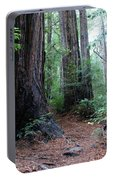 A Redwood Trail Portable Battery Charger
