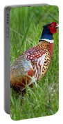 A Ring-necked Pheasant Walking In Tall Grass Portable Battery Charger