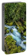 A River's Path Portable Battery Charger