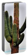 A Saguaro Afternoon Portable Battery Charger