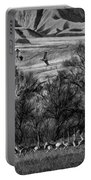 A Sedge Of Sandhill Cranes Portable Battery Charger