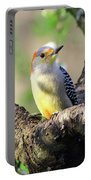 A Shady Woodland Bird Red-bellied Woodpecker Portable Battery Charger