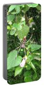 A Spider Web Portable Battery Charger