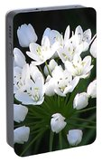 A Spray Of Wild Onions Portable Battery Charger by Felipe Adan Lerma