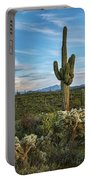 A Spring Evening In The Sonoran  Portable Battery Charger