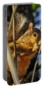 A Squirrel's Feist Portable Battery Charger