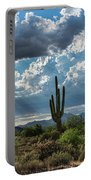 A Summer Day In The Sonoran  Portable Battery Charger