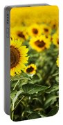 A Sunflower Plantation In Summer In South Dakota Portable Battery Charger