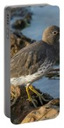 A Surfbird At The Tidepools Portable Battery Charger