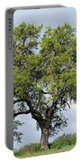 A Tale Of One Tree Portable Battery Charger