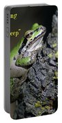 A Terrific Frog #2 Portable Battery Charger