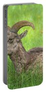 A Time To Rest Portable Battery Charger