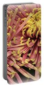 A Touch Of Yellow On Pink Mums Portable Battery Charger