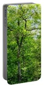 A Tree In The Woods At The Hacienda  Portable Battery Charger