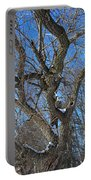 A Tree In Winter- Vertical Portable Battery Charger