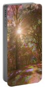 A Walk Through The Rainbow Forest Portable Battery Charger by Beth Sawickie