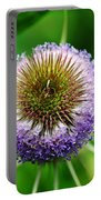 A Wild And Prickly Teasel Portable Battery Charger