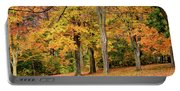 A Wonderful Walk In The Park Portable Battery Charger