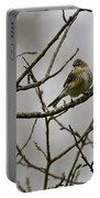 A Yellow-rumped Warbler In The Evening Portable Battery Charger
