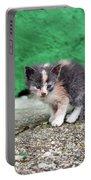 Abandoned Kitten On The Street Portable Battery Charger